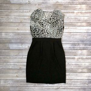 NWOT Max & Cleo Cocktail Dress